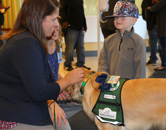 Meet Kaia: Facility dog at Penn State Children's Hospital