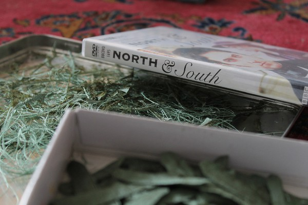 North and South - Misericordia