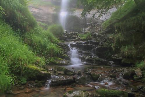 Parque Natural de #Gorbeia #Orozko #DePaseoConLarri #Flickr - -511