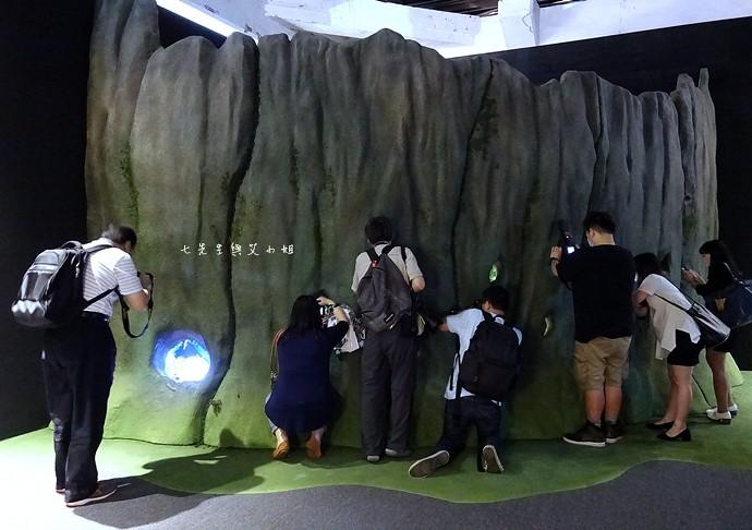 45 吉卜力的動畫世界特展