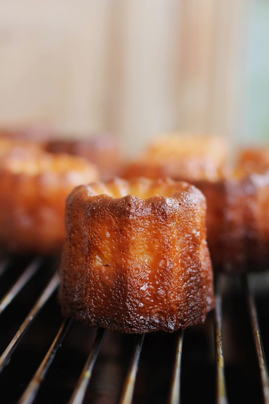 paticheri_canele (7)