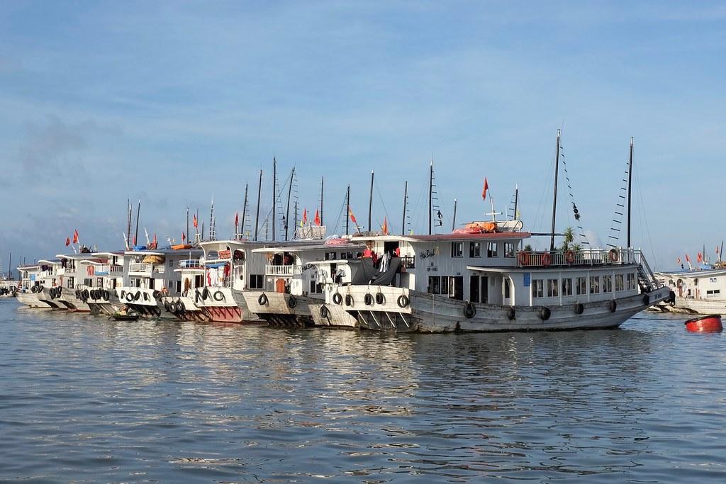 deretan kapal yang siap melayani ke Ha Long Bay