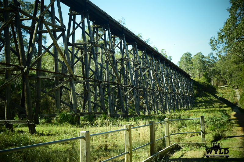 stony creek trestle Colquhoun State Forest
