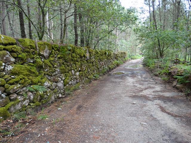 Ruta da Gafa e Portosín