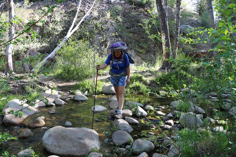 Vicki crossing Holcomb Creek at PCT mile 292