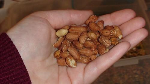 Cacahuetes de la mezcla Witte Molen