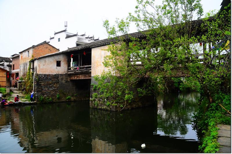 思溪延村--通濟橋 4