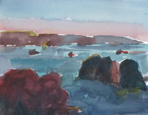 Mendocino Coast2