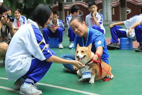 Love Animal Model School  IMG_5117-1