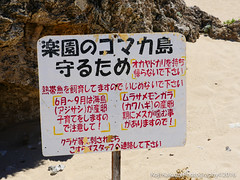 コマカ島-2016-06-19-46