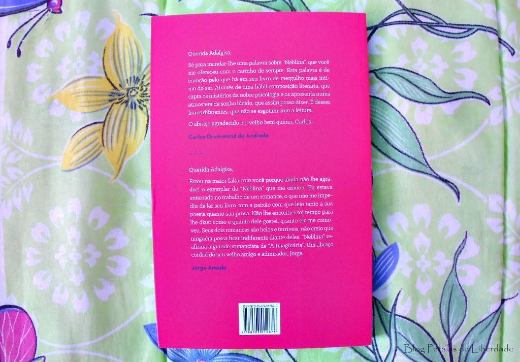 Livro, Neblina, Adalgisa-Nery, capa