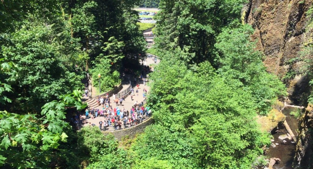Looking down at Multnomah Falls viewpoint