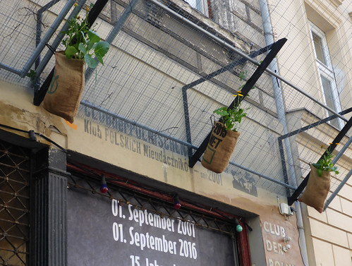 Balkonbeflanzung