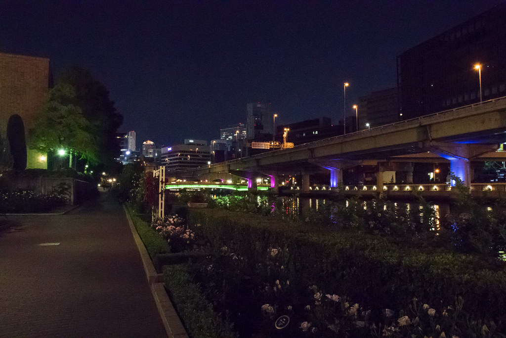160514_03_nakanoshima_rose2016_046