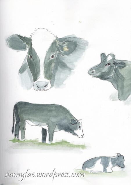 cows-sketch