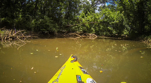 Goat Island in the Broad River-179