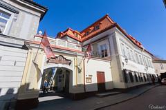 10.Дворец Олизара (Olizarų rūmai) (2)