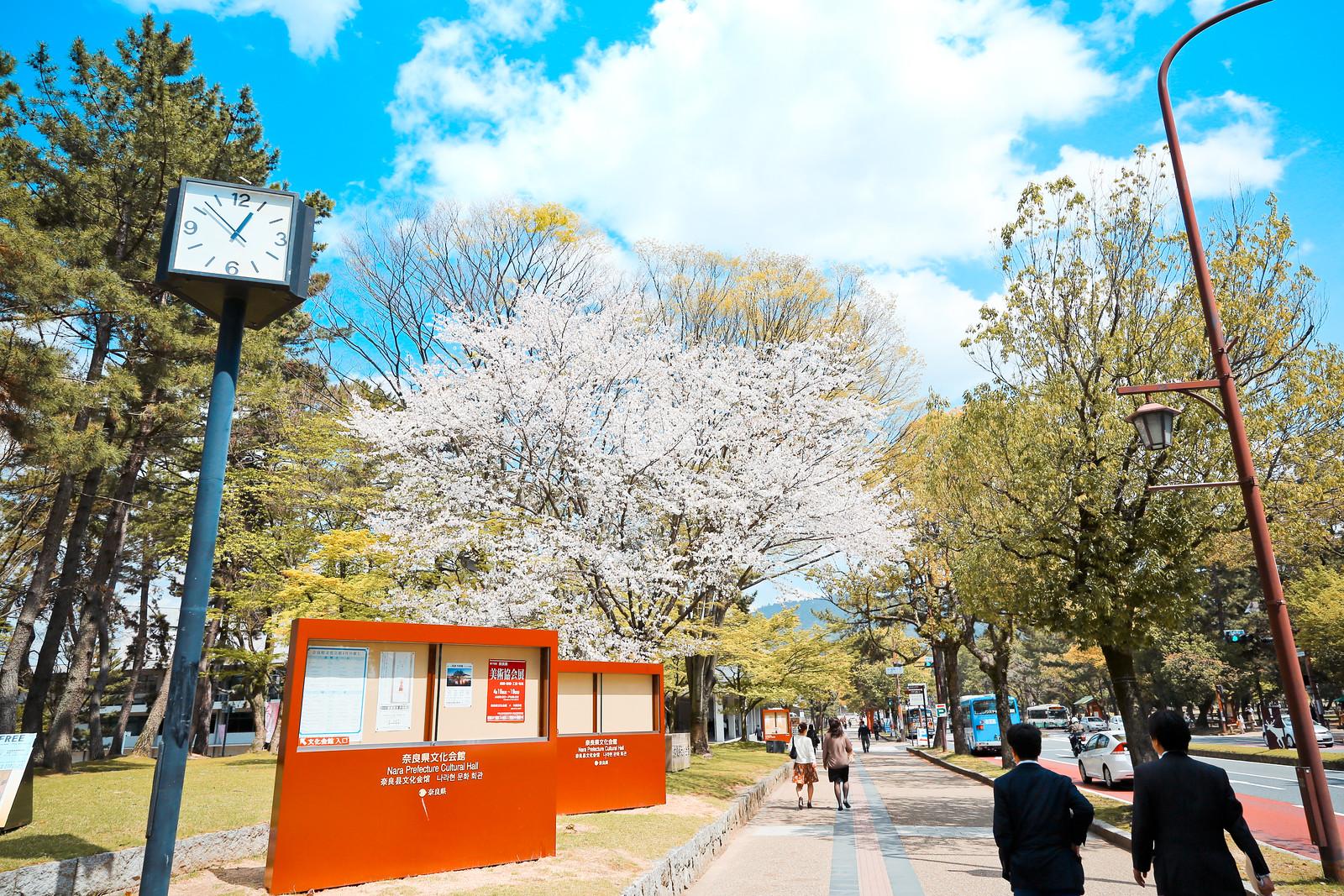 2015 April Kansai 37