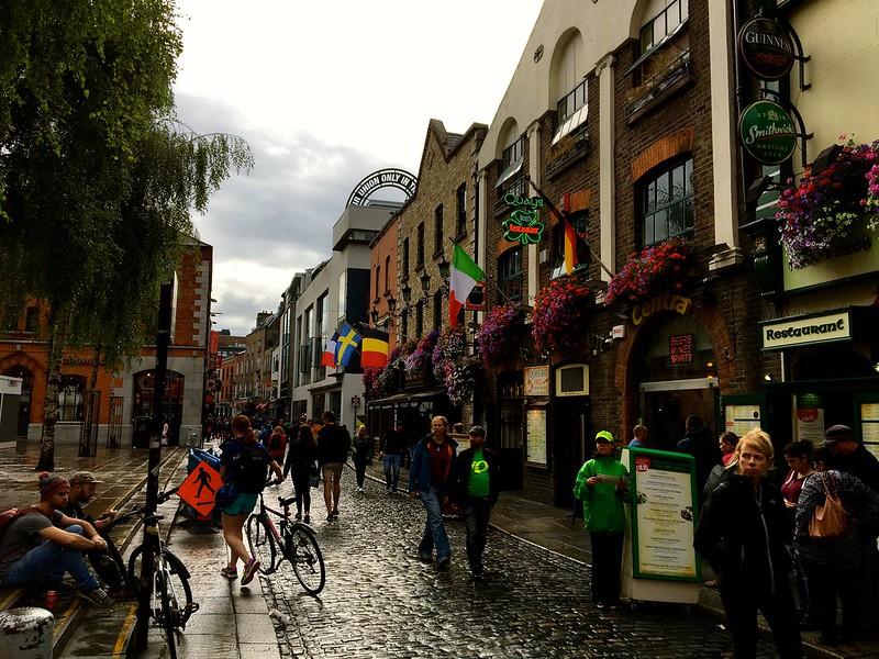 Ireland homestay 201614