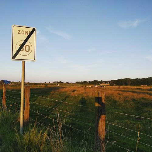 High speed 💨 #eveningrun #starttorun #nevergiveup #speedup