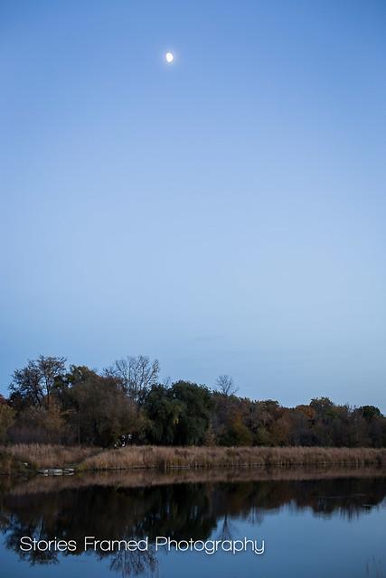 296. | moon over elm grove pond.