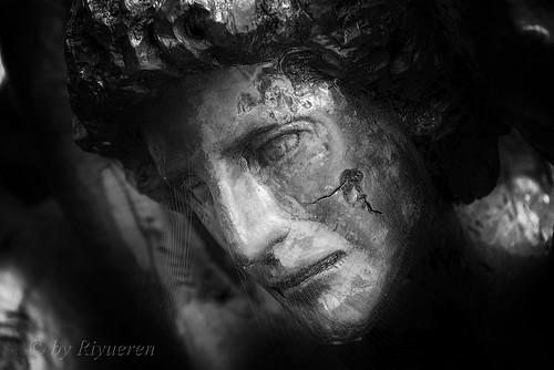 Sculture di Gian Franco Timossi