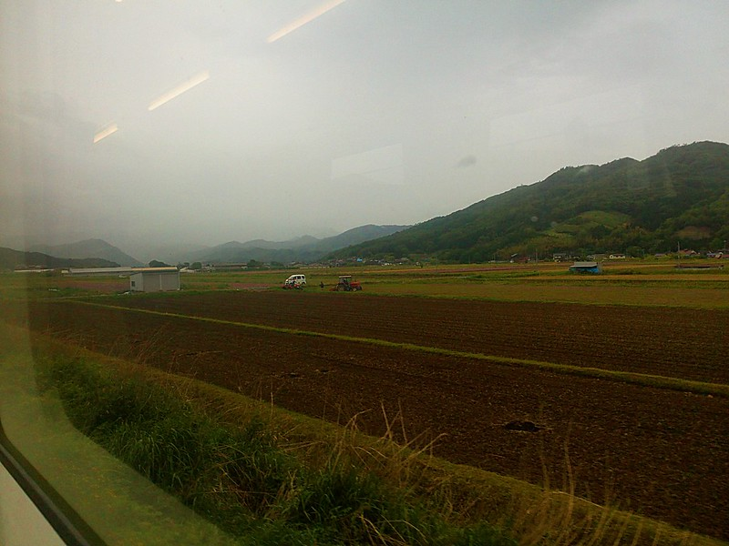 Views from train