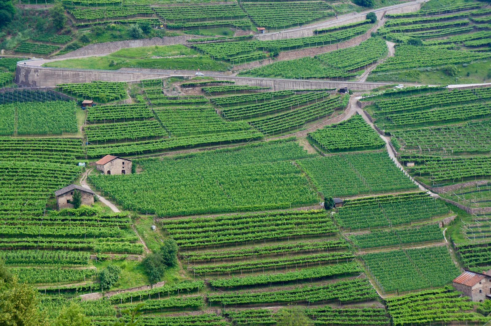Valle di Cembra, Trentino