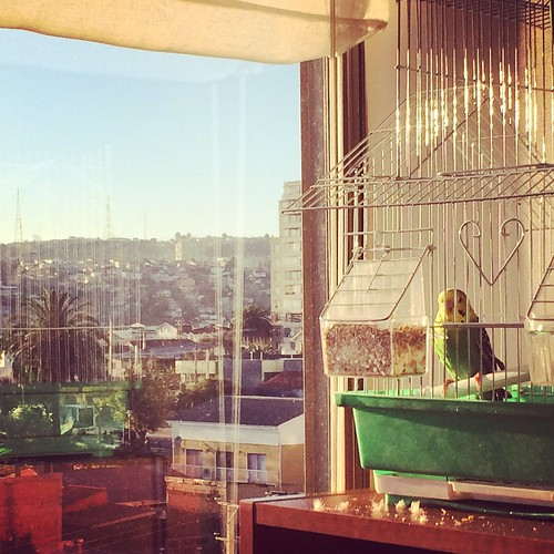 Hogar #Valparaíso