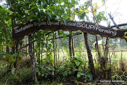 binahon-farm-tour.jpg