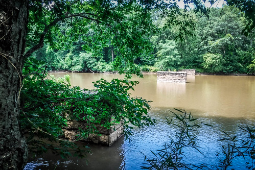 Goat Island in the Broad River-106