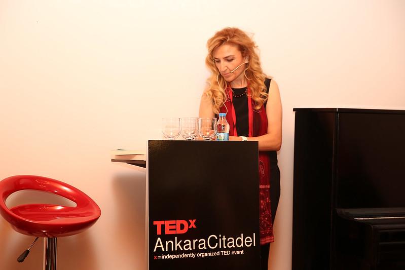 TEDxAnkaraCitadel 2016