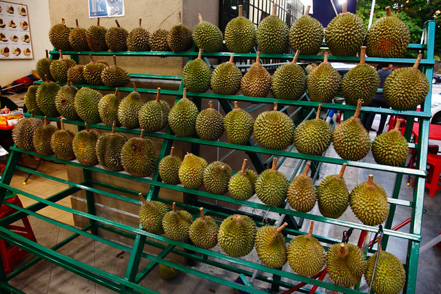Sinnaco Durian Specialist Durian Rack