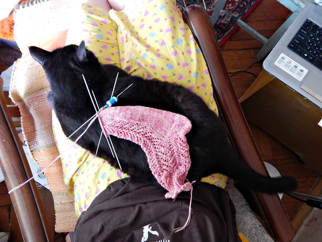 Чёрный кот Муся и вязание | Musia the Black Cat helps with the knitting | horoshogromko.ru