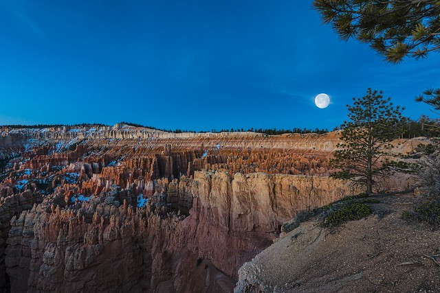 Bryce Canyon Blue hour