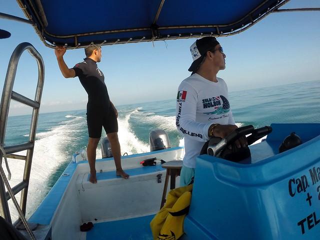 Whale shark dive Holbox Mexico