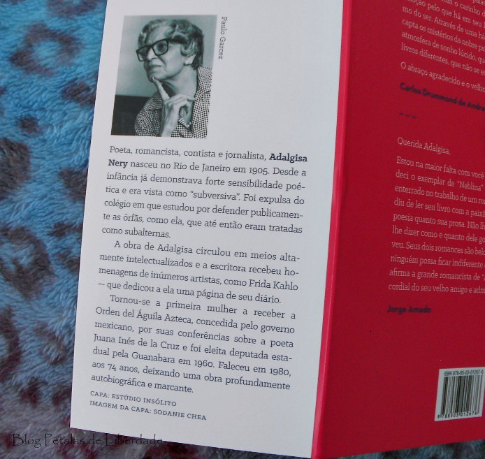 Resenha, livro, Neblina, escritora, romance, Adalgisa-Nery, Jose-Olympio, trechos, opiniao, capa, edição-nova