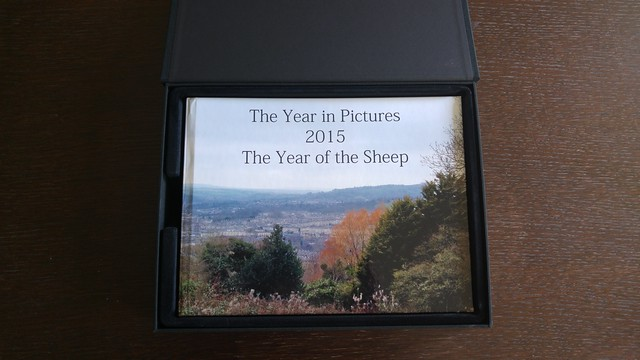 Year in Pictures 2015