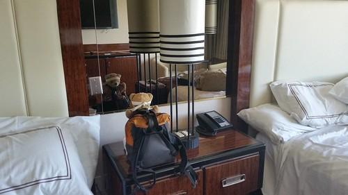 Hotel Bear