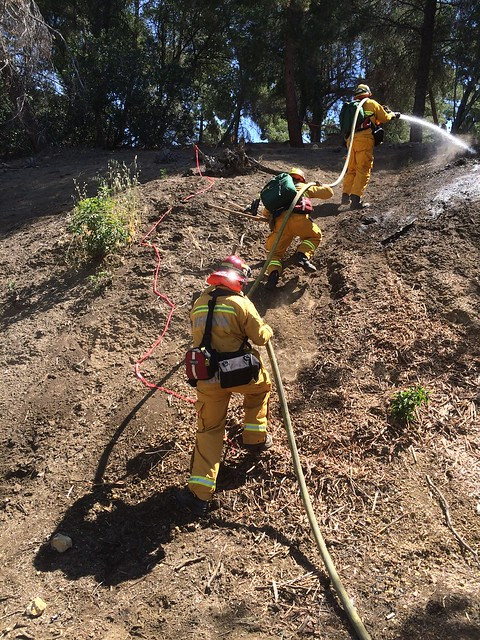 Wildland Training with Area E Fire Departments 2016 | by LHHFD