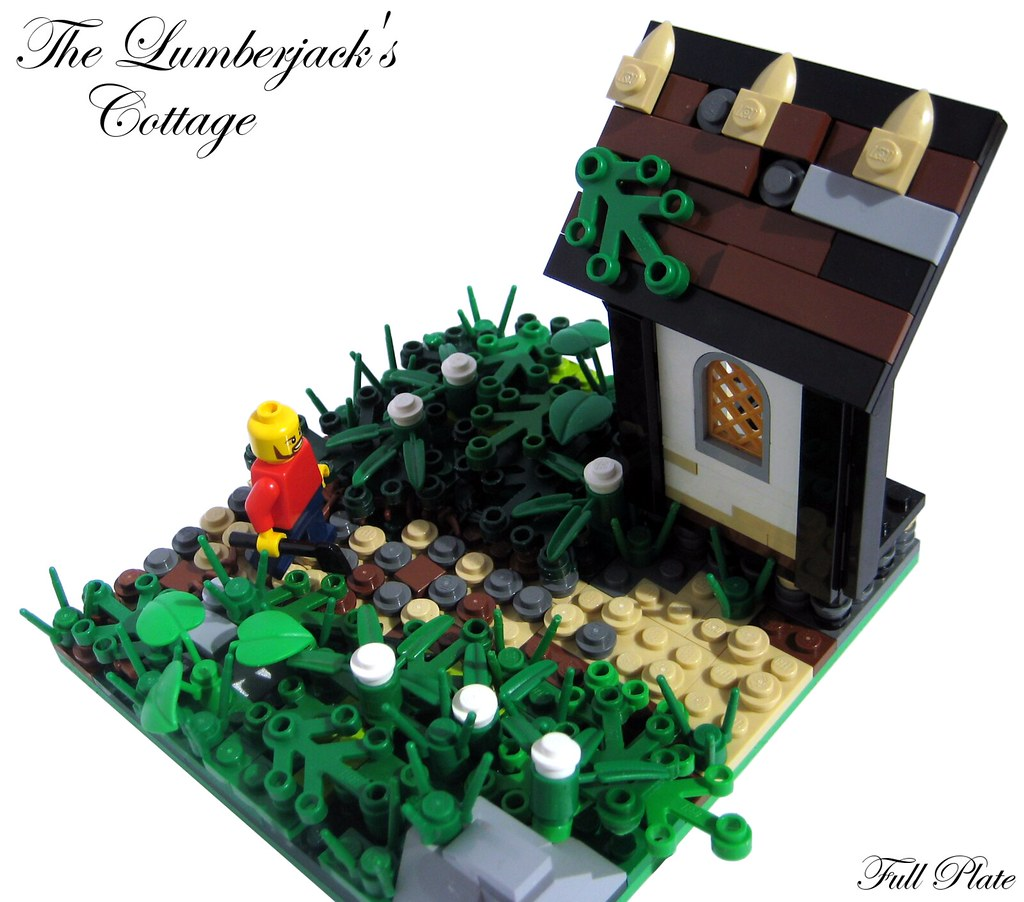 The Lumberjack's Cottage (1 of 3)