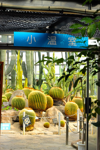 Tegarayama conservatory botanical garden