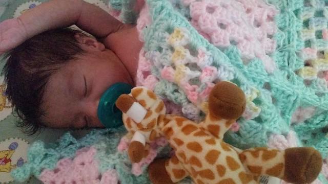 Nova Sleeping at 21 Days Old