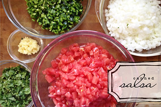 Canned Garden Salsa | by lesley zellers
