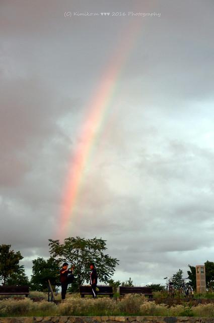 Today Rainbow