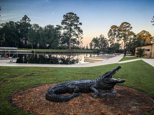 Okefenokee Swamp-001