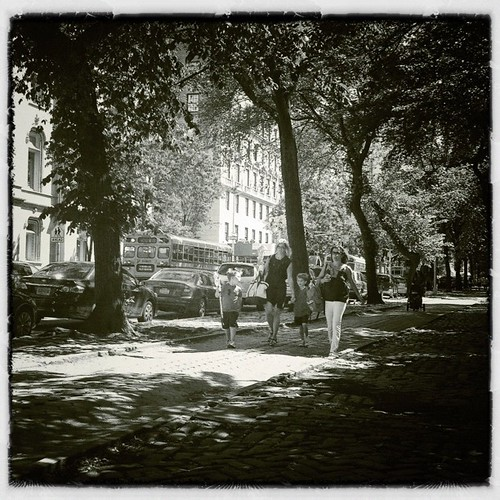 Dappled foursome #bw #iphoneography | by danielrmccarthy