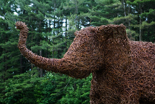 Pachyderm delivery | by The Glimmerglass Festival