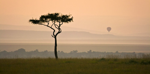 21-52: maasai mara ballooning | by matt_in_a_field