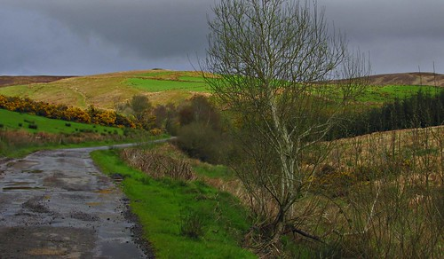 Facing the moorland meander | by Dazzygidds